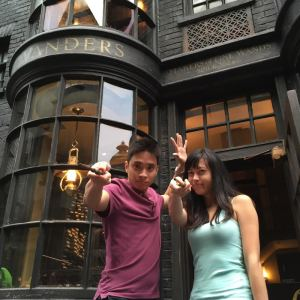 harry potter world wand